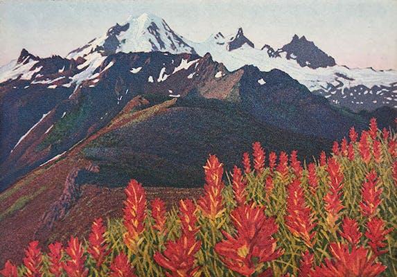 View Prints by Stephen McMillan